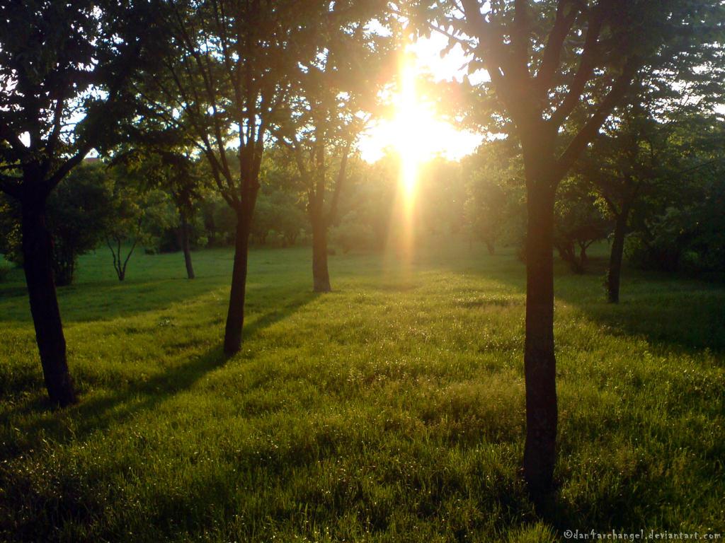 Sunset Walk by Dan4ArChAnGeL