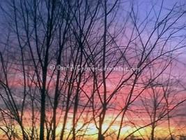 Sunset by Dan4ArChAnGeL