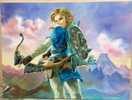 The legend of Zelda: Breath of the Wild, Link