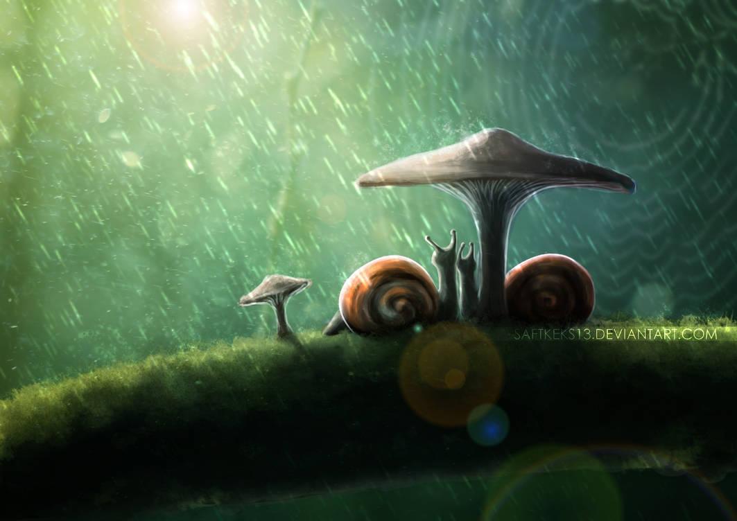 Snails In The Rain by saftkeks13