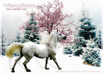 a wintry day -cherry blossom- by muffin-imagery