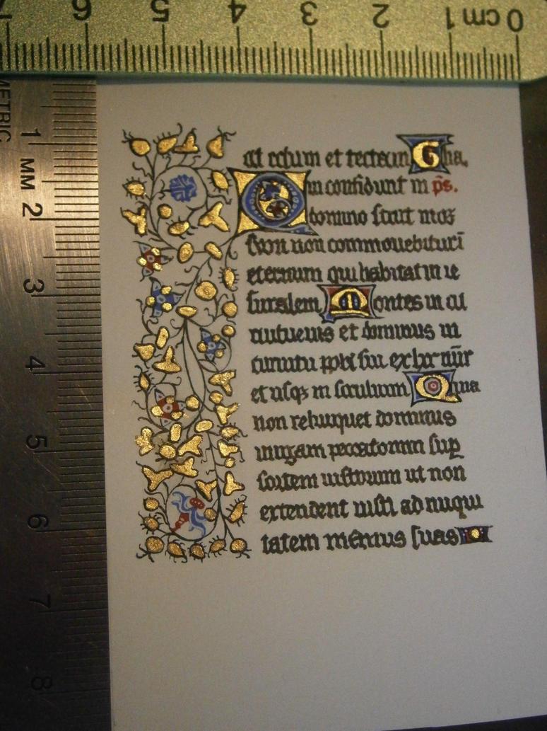Mini-Scroll Mini-Project by Merwenna