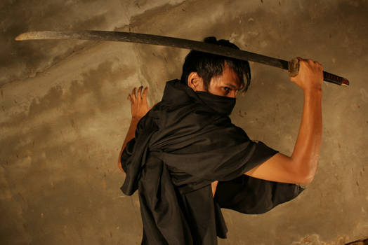 Samurai Shadow
