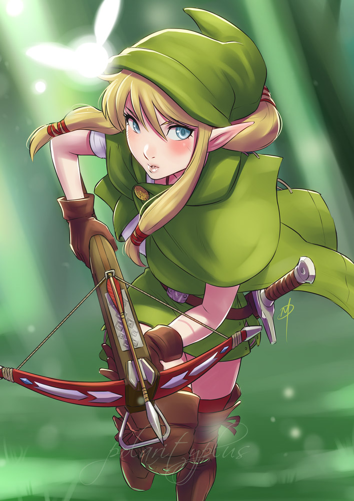 hyrule_warriors___the_missing_linkle_by_