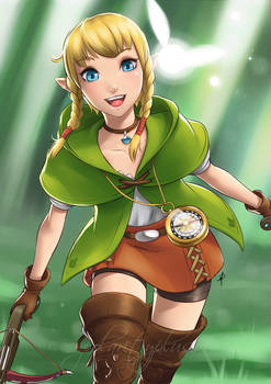 Hyrule Warriors - Linkle redux