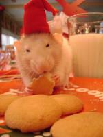 Merry Xmas from Wally by Umbrati