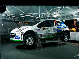 Peugeot 207 Super 2000 Rally Car by sistematicterror