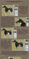 Shading Black Horses - Simple Tutorial