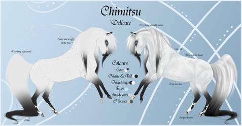 Chimitsu Reference Sheet by Paardjee