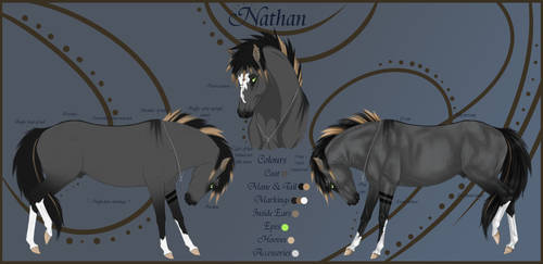 Nathan Reference Sheet NEW by Paardjee