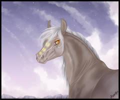 CM: Lilliantha by Paardjee