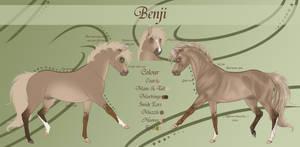Benji Reference Sheet