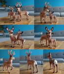 Mule deer family Felt - FOR SALE