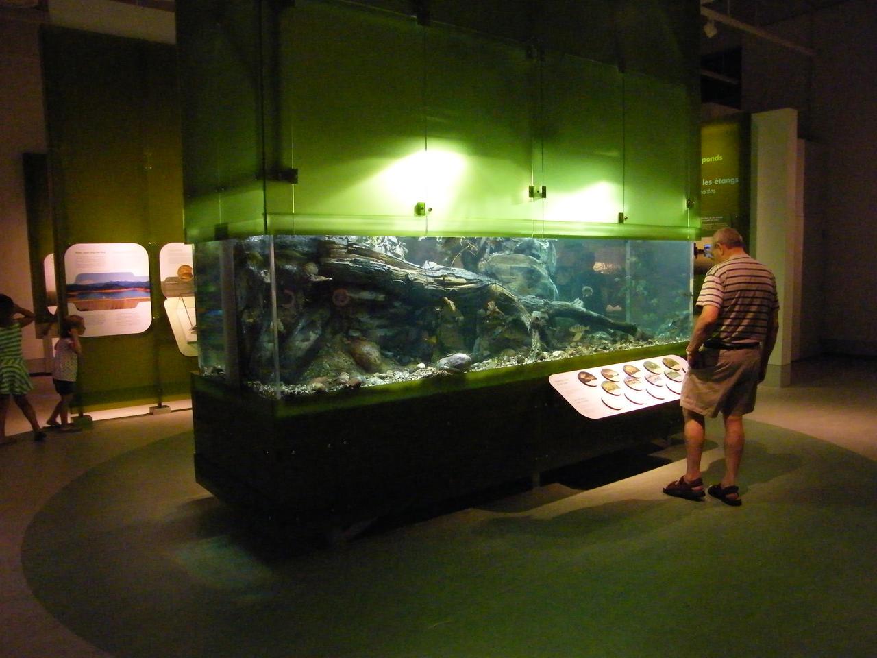 Big fish tank by mncamaro on deviantart for Large fish tank