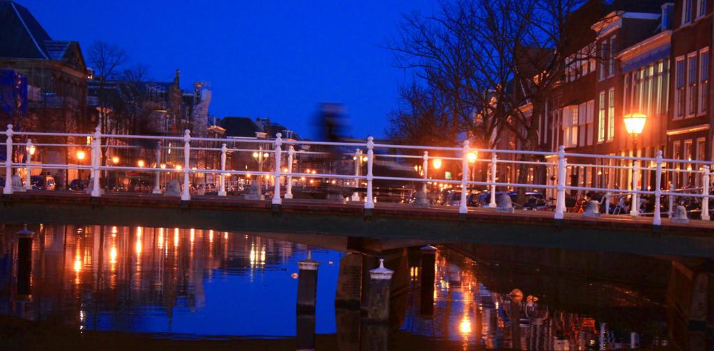 Leiden III by eublepharimila