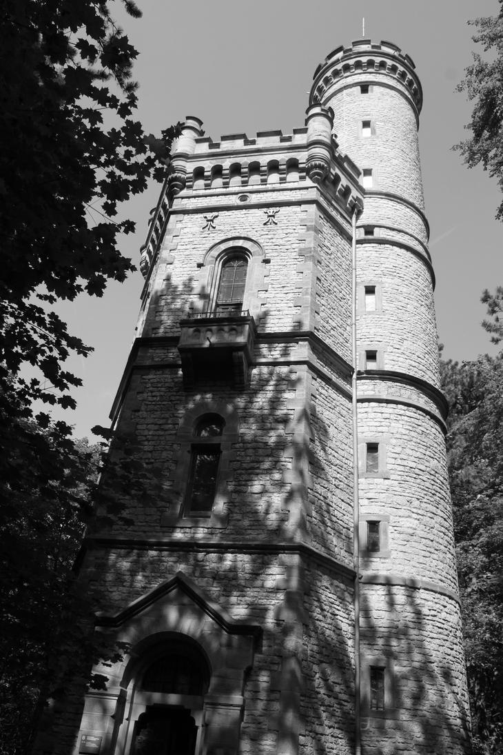 Rapunzel's castle by eublepharimila