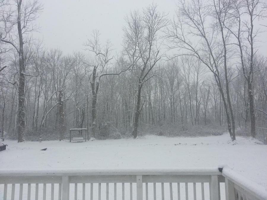 A Winter's Day by Binks0Sake