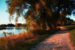 Turning Autumn 3