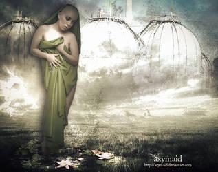 Nenuphars by axymaid