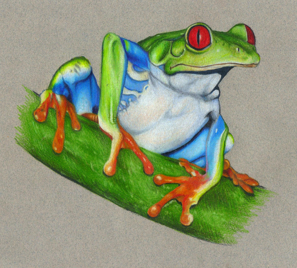 Tree Frog by Valchitsa on DeviantArt