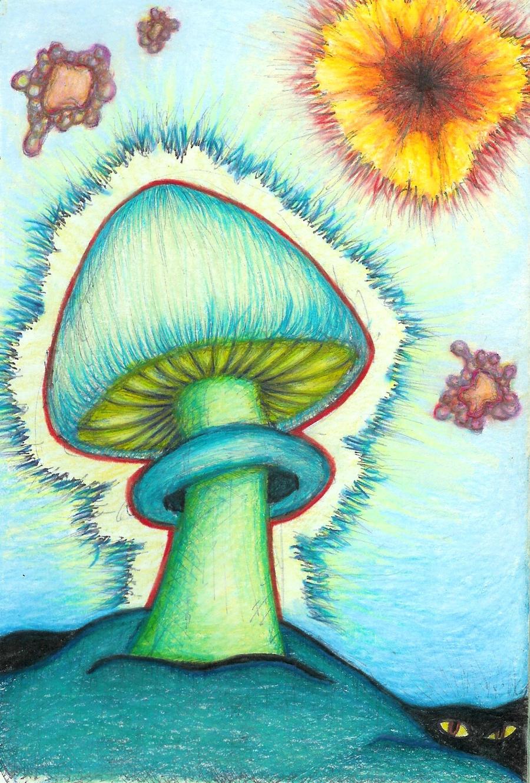 Magic Mushroom Drawings Magic Mushroom Drawings Tumblr