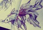 Goldfish Hybrid