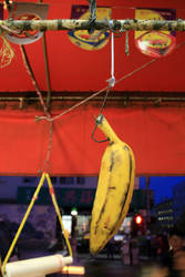 Hanging banana by beeecca