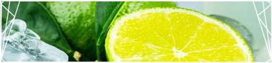 [F2U] - Limes Divider