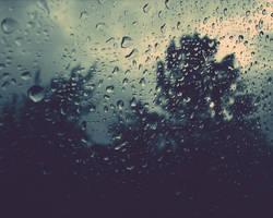 Rain Stickers by NovemberART