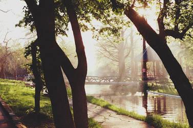 Nicolae Romanescu Park, Lights and Shadows 2