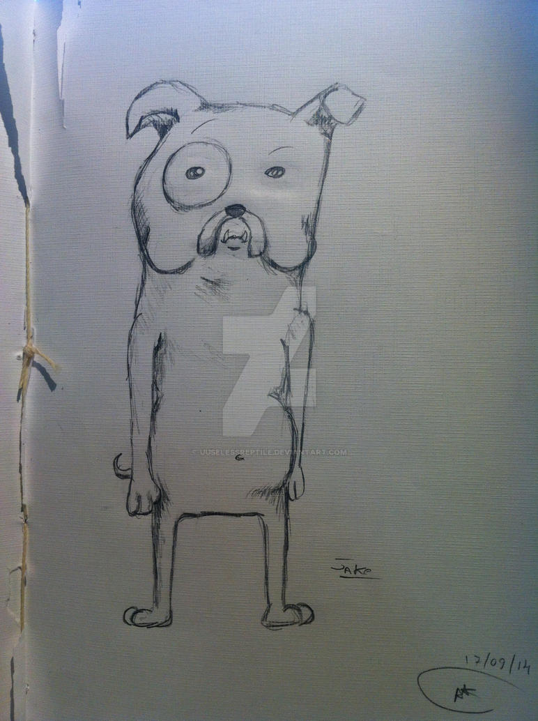 Jake The Dog by UUselessReptile