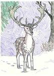 Deercember - Fallow Deer