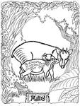 Pudu Coloring Page
