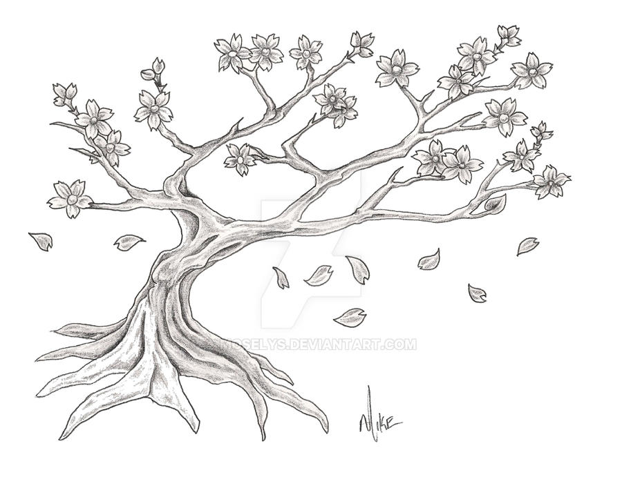 Blossom Tree Drawing: Cherry Blossom Tree By Moselys On DeviantArt