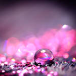 pink - droplet . . ..