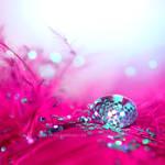 : Pink :