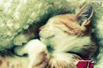 sleepy. ..