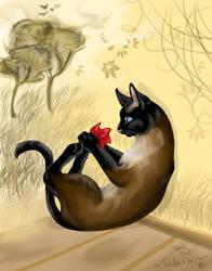 My lovely cat by Tabia
