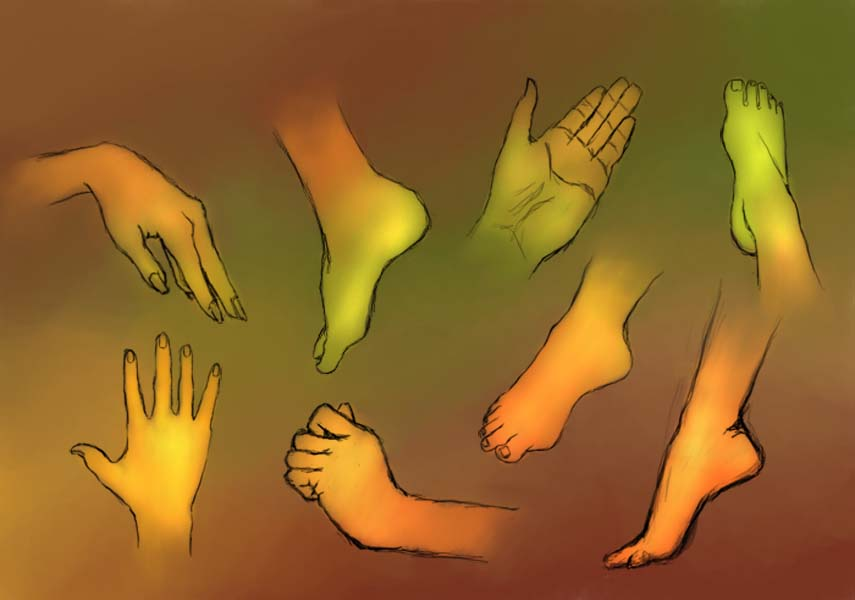 Hand/Feet practice by LoSqui