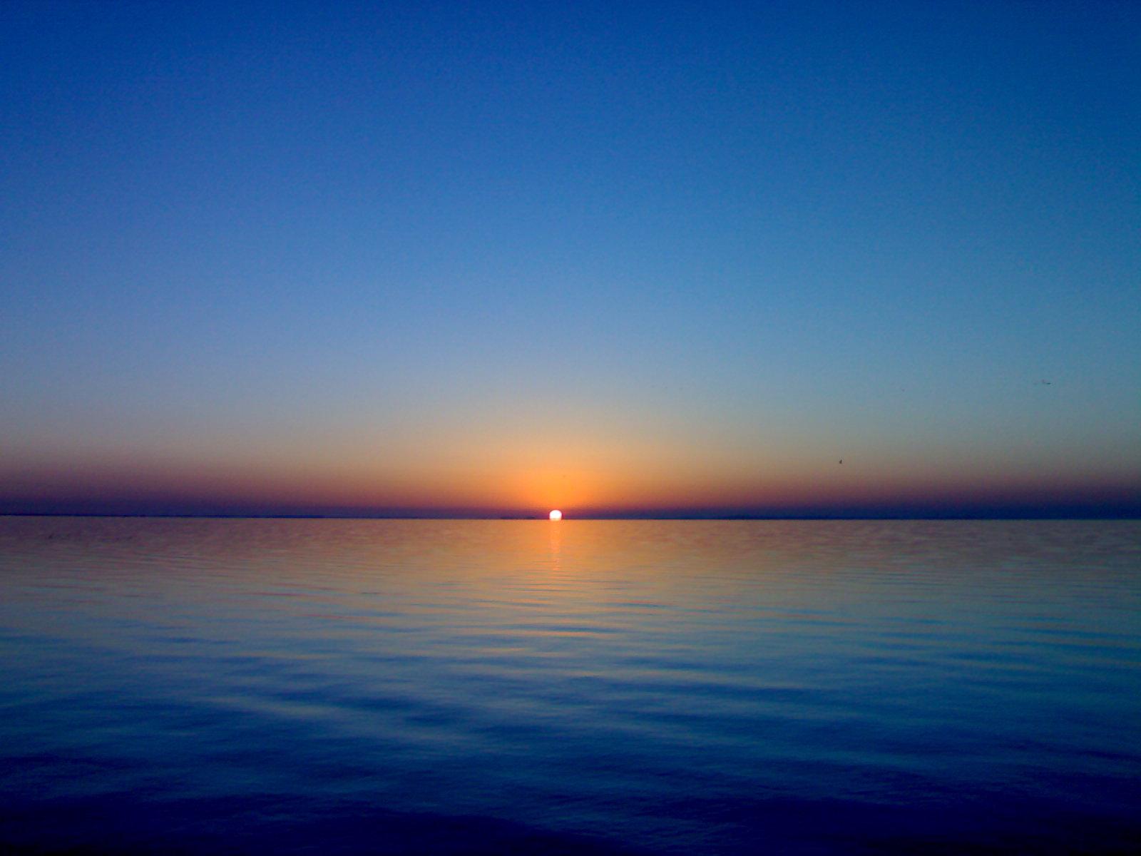 Sunshine Nador ... by mfadev