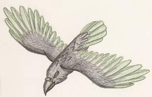 Munin's Raven