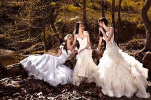 Modern Brides 2011 4 by PinkFishGR