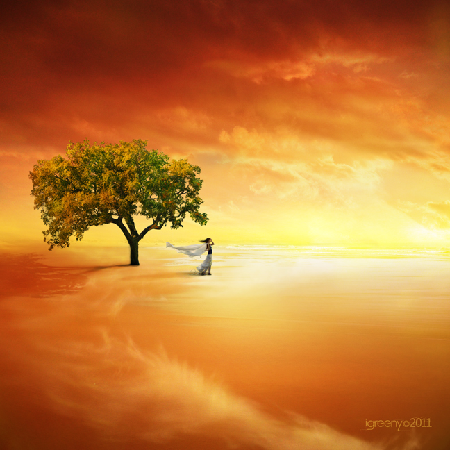 Lonely tree by igreeny on deviantART