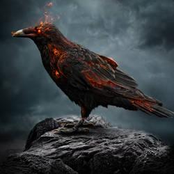 Crow by igreeny