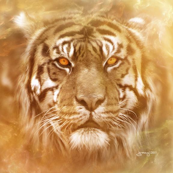 Tiger by igreeny