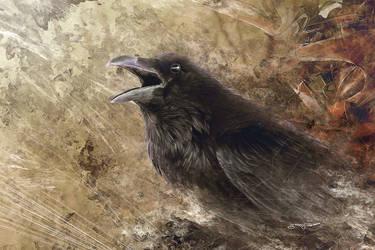 Raven by igreeny