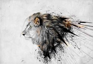 Lion by igreeny