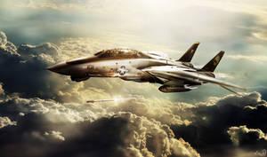 F-14 Tomcatters Ver.II