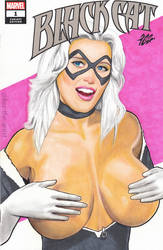 Black Cat Sexy Pin Up Sketch Cover Artwork by Kez-the-artist