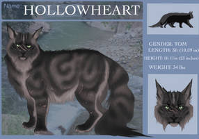 Hollowheart Reference by lrishGypsy